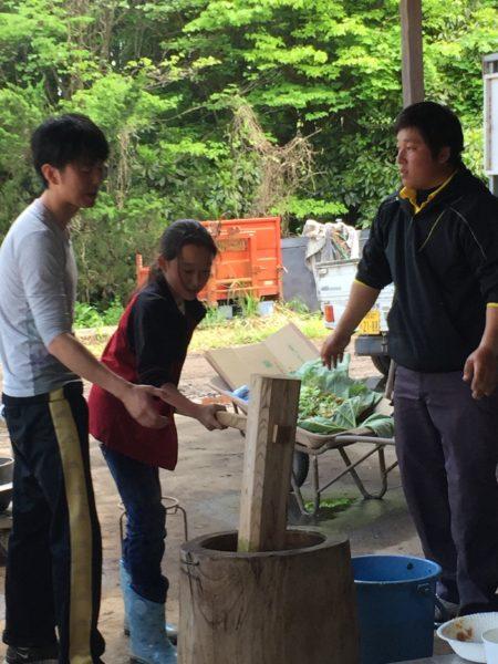 2016年田植え体験3