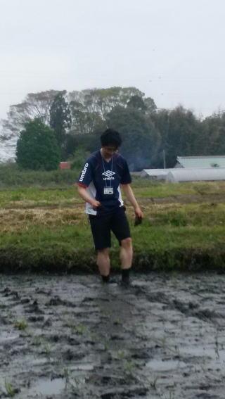 2016年田植え体験4