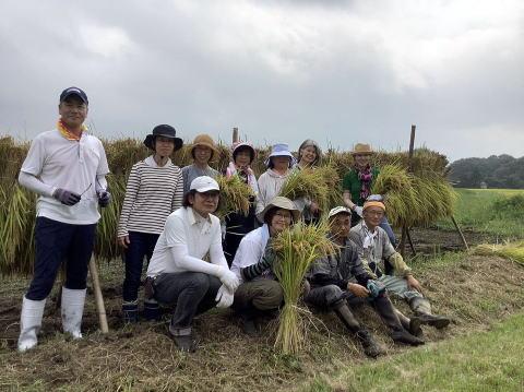 2020年 稲刈り体験3