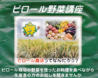 らん藻野菜講座1